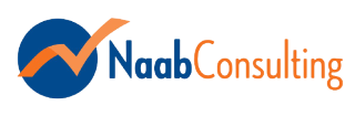 Naab Consulting Logo